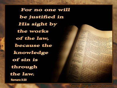 Romans 3:20 Knowledge of Sin is Through the Law (orange)